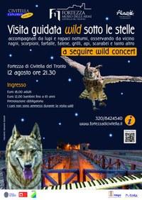 Visita e concerto wild sotto le stelle in Fortezza