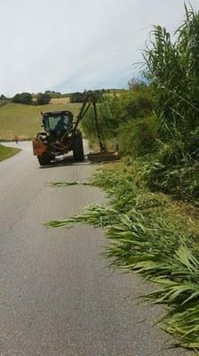 Cantieri aperti. Ventisette ditte esterne per gli sfalci d'erba sulle provinciali.