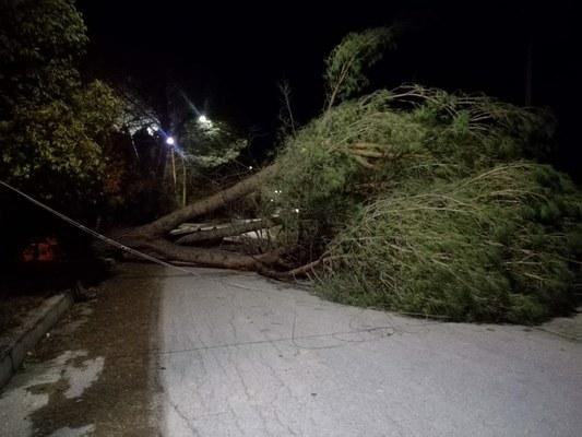 Vento forte: decine di interventi nel corso della notte e della mattinata, molti sulla rete stradale ricadente nel territorio di Civitella del Tronto